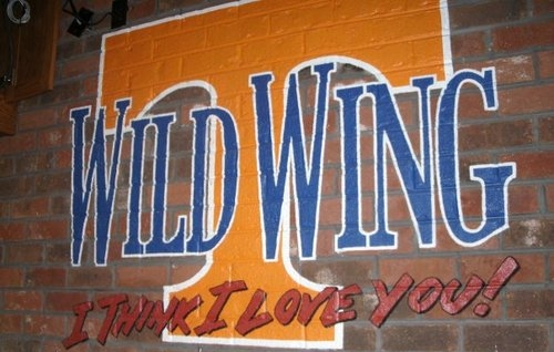Groove Evolution @ Wild Wing Cafe Knoxville 4-21-17